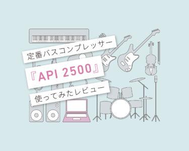 API2500使い方レビュー